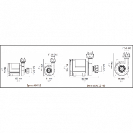 10091-thickbox_default-Syncra-ADV-5.5-5700LH-Sicce